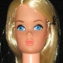 Busy Barbie