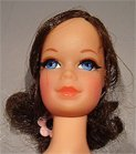 Talking Barbie Doll with Stacey Face